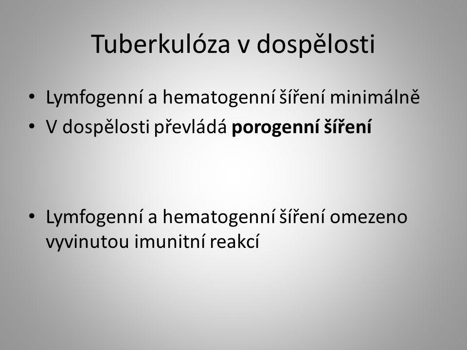 Tuberkulóza v dospělosti Lymfogenní a hematogenní šíření minimálně V dospělosti převládá porogenní šíření Lymfogenní a hematogenní šíření omezeno vyvi