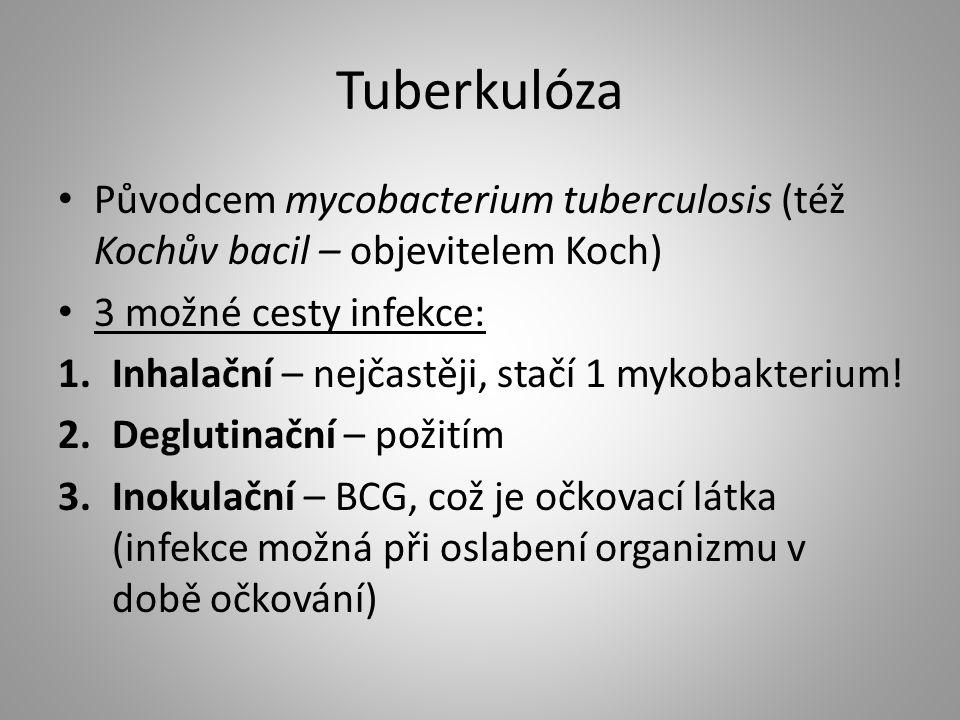 Tuberkulóza Původcem mycobacterium tuberculosis (též Kochův bacil – objevitelem Koch) 3 možné cesty infekce: 1.Inhalační – nejčastěji, stačí 1 mykobak