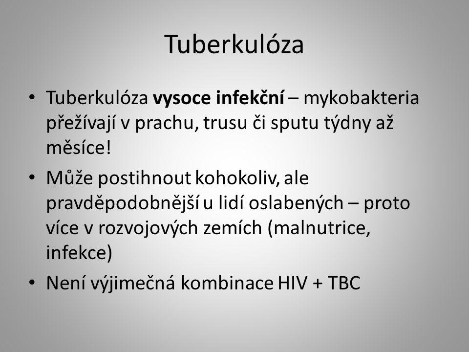 Tuberkulóza Tuberkulóza vysoce infekční – mykobakteria přežívají v prachu, trusu či sputu týdny až měsíce! Může postihnout kohokoliv, ale pravděpodobn
