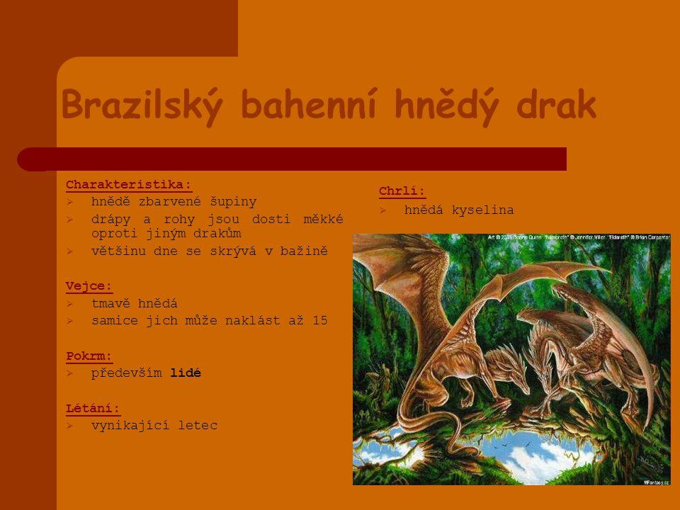 Brazilský bahenní hnědý drak Charakteristika:  hnědě zbarvené šupiny  drápy a rohy jsou dosti měkké oproti jiným drakům  většinu dne se skrývá v ba