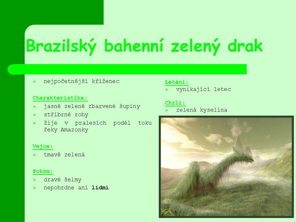 Brazilský bahenní zelený drak  nejpočetnější kříženec Charakteristika:  jasně zeleně zbarvené šupiny  stříbrné rohy  žije v pralesích podél toku ř