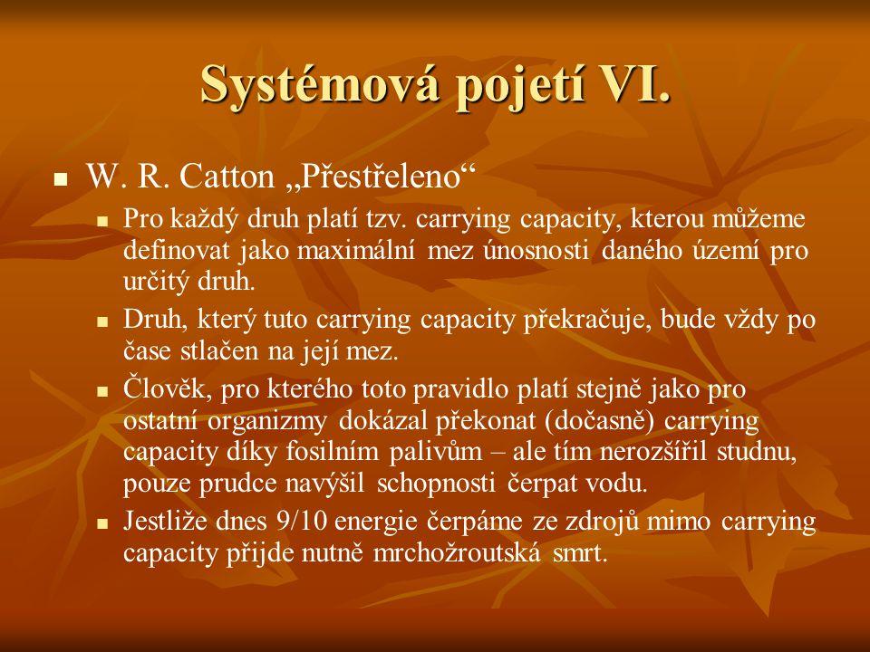 Systémová pojetí VII.W. R.