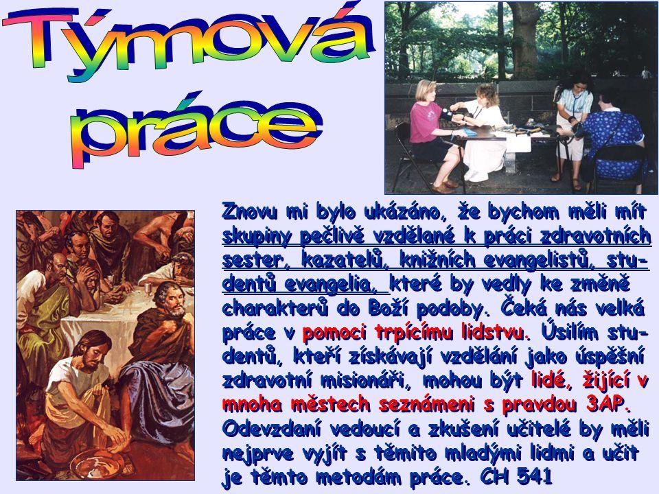 Znovu mi bylo ukázáno, že bychom měli mít skupiny pečlivě vzdělané k práci zdravotních sester, kazatelů, knižních evangelistů, stu- dentů evangelia, k