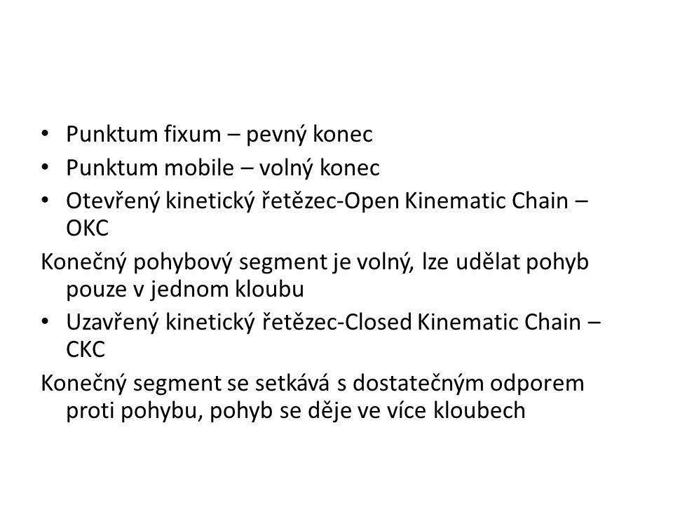 Punktum fixum – pevný konec Punktum mobile – volný konec Otevřený kinetický řetězec-Open Kinematic Chain – OKC Konečný pohybový segment je volný, lze udělat pohyb pouze v jednom kloubu Uzavřený kinetický řetězec-Closed Kinematic Chain – CKC Konečný segment se setkává s dostatečným odporem proti pohybu, pohyb se děje ve více kloubech