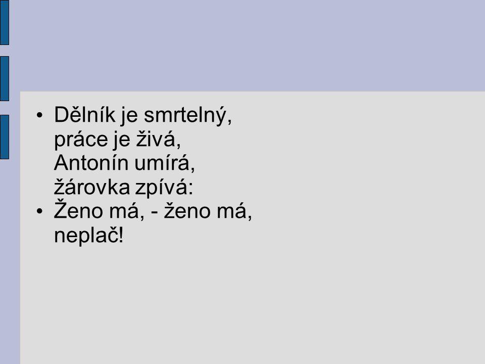 Seznam použitých pramenů: www.cesky-jazyk.cz www.zivotopisy.cz Wolker: Balada o očích topičových Centrum pro virtuální a moderní metody a formy vzdělávání na Obchodní akademii T.G.