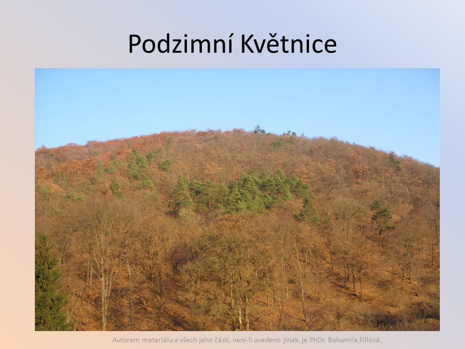 Podzimní Květnice Autorem materiálu a všech jeho částí, není-li uvedeno jinak, je PhDr. Bohumila Fillová.