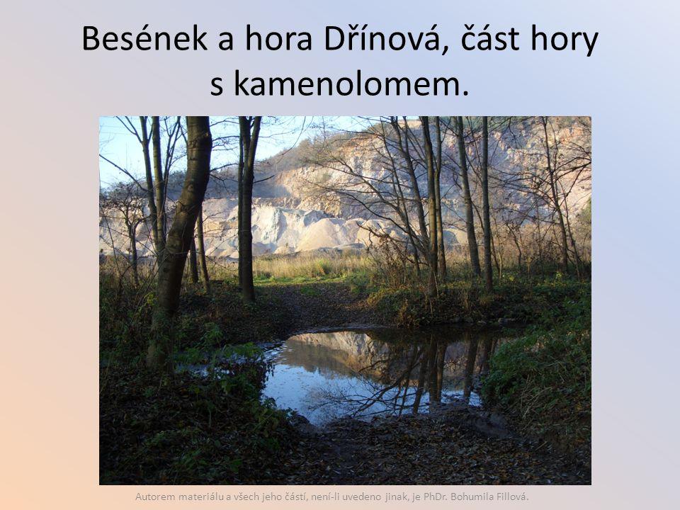 Besének a hora Dřínová, část hory s kamenolomem. Autorem materiálu a všech jeho částí, není-li uvedeno jinak, je PhDr. Bohumila Fillová.