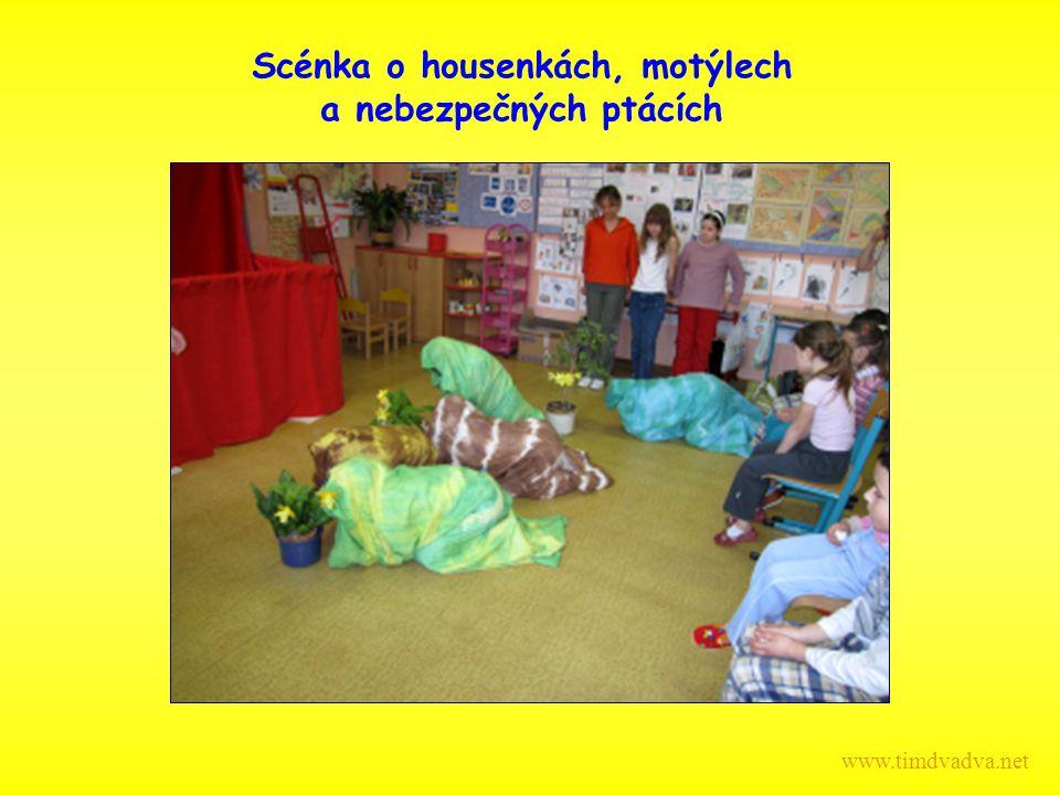 Scénka o housenkách, motýlech a nebezpečných ptácích www.timdvadva.net
