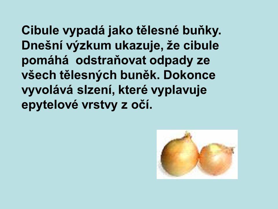 Grapefruity, pomeranče a jiné citrusové plody vypadají jako mléčné žlázy a vlastně podporují zdraví prsů a pohyb lymfy do prsů a z prsů.