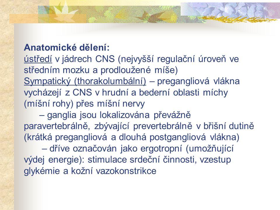 Respirační systém – průduškové svaly – kontrakce (bronchokonstrikce) – žlázy průdušnice a průdušek - stimulace Gastrointestinální trakt – vzestup motility – sfinktery – relaxace – stimulace sekrece slinných a žaludečních žláz, slaběji pankreatu a intestinálních žlázek Urogenitální trakt – m.