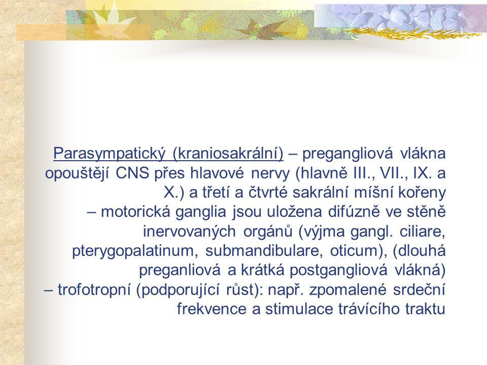 Parasympatický (kraniosakrální) – pregangliová vlákna opouštějí CNS přes hlavové nervy (hlavně III., VII., IX. a X.) a třetí a čtvrté sakrální míšní k