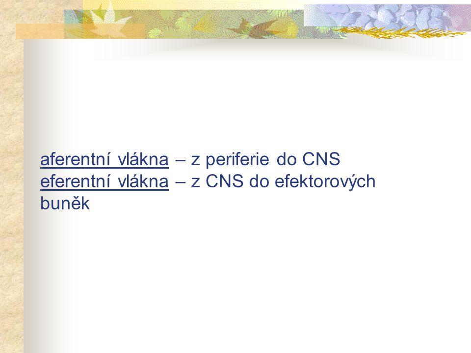 Nepřímo působící (inhibitory cholinesterázy) reverzibilníireverzibilní edrofonium, karbamáty organofosfáty
