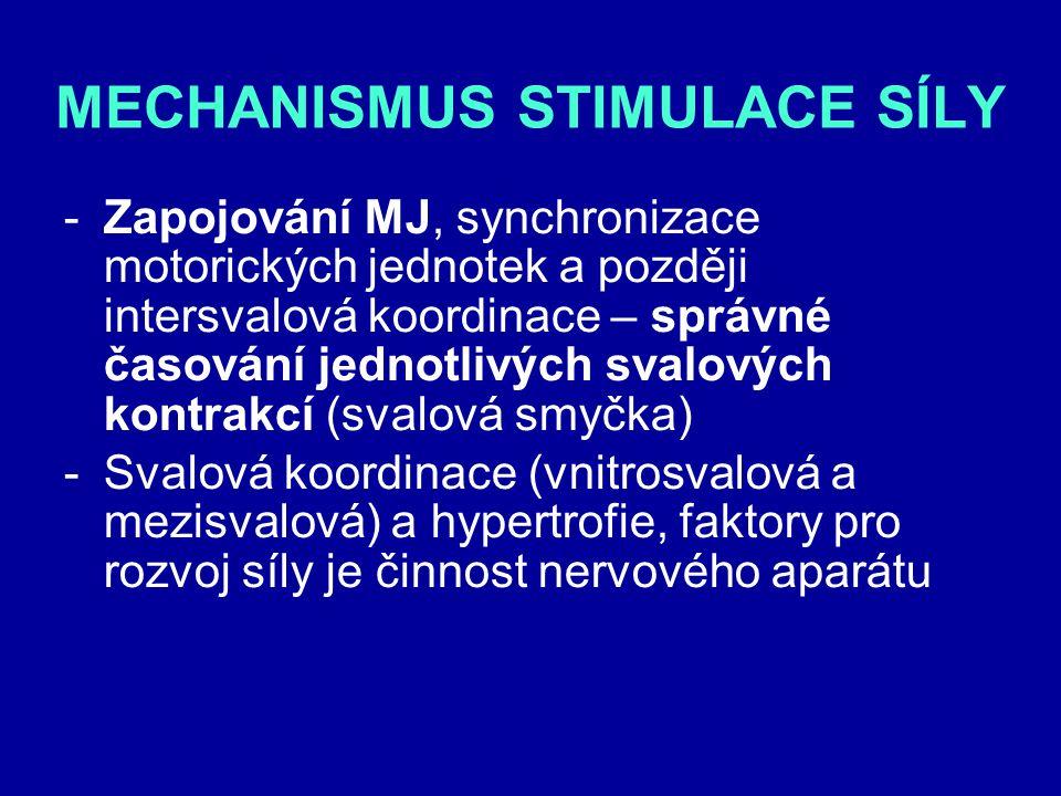 MECHANISMUS STIMULACE SÍLY -Zapojování MJ, synchronizace motorických jednotek a později intersvalová koordinace – správné časování jednotlivých svalov