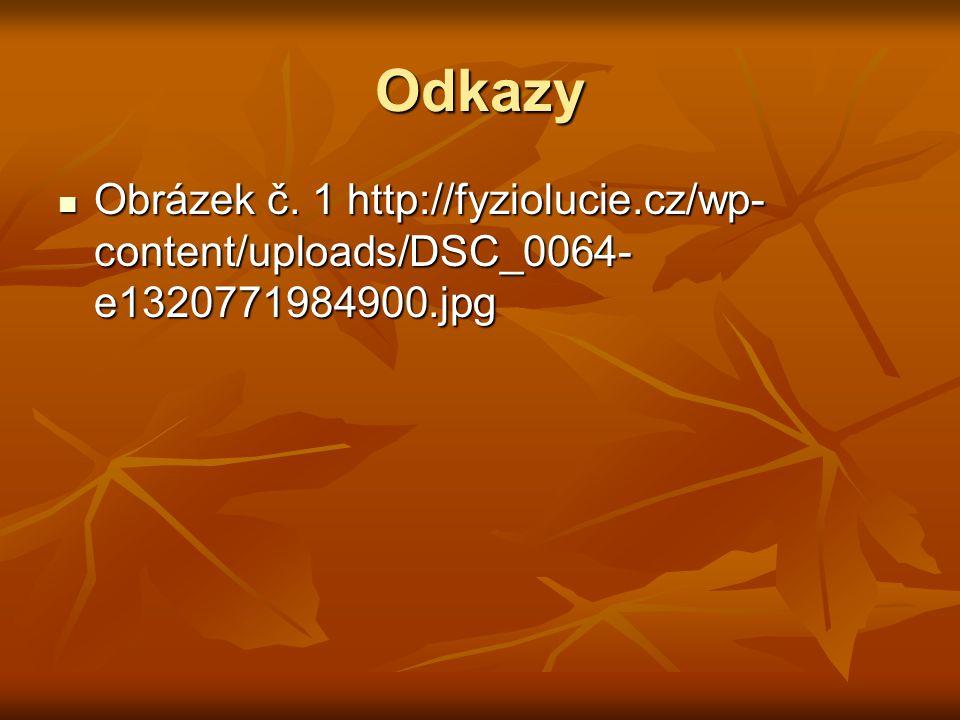 Odkazy Obrázek č. 1 http://fyziolucie.cz/wp- content/uploads/DSC_0064- e1320771984900.jpg Obrázek č. 1 http://fyziolucie.cz/wp- content/uploads/DSC_00