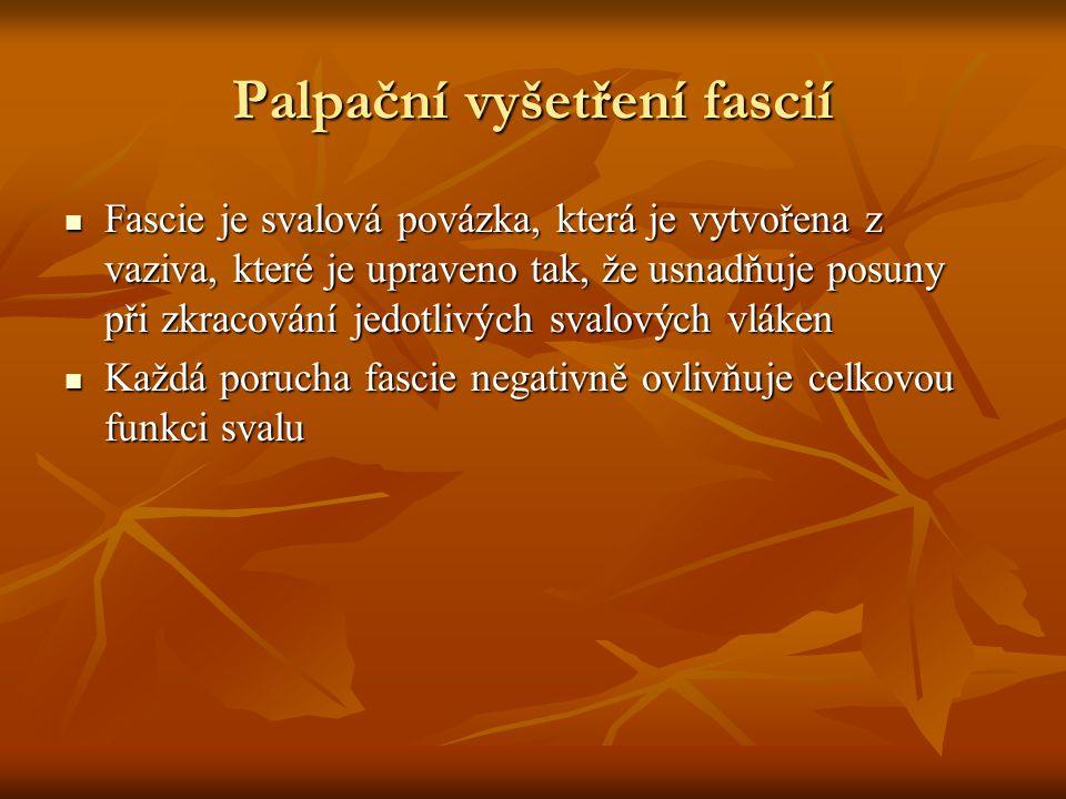 Palpační vyšetření fascií Fascie je svalová povázka, která je vytvořena z vaziva, které je upraveno tak, že usnadňuje posuny při zkracování jedotlivýc