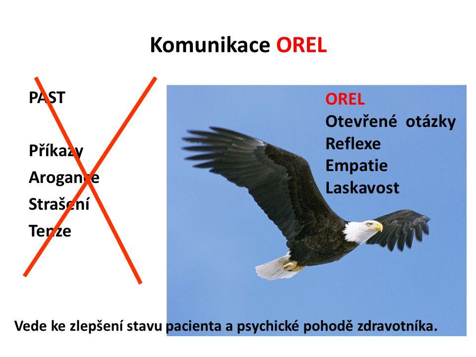 Komunikace OREL PAST Příkazy Arogance Strašení Tenze OREL Otevřené otázky Reflexe Empatie Laskavost Vede ke zlepšení stavu pacienta a psychické pohodě