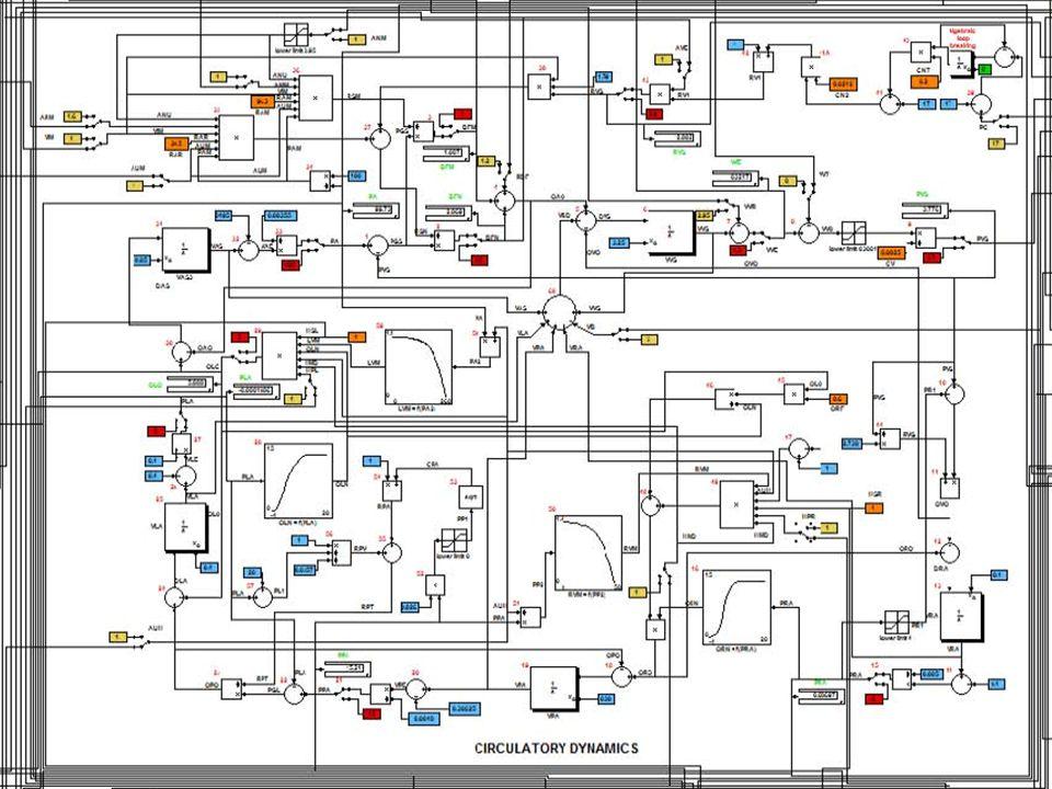 Cirkulační dynamika Čerpadlo pravá komora Čerpadlo levá komora Akauzální propojení (flow/nonflow proměnné) Akauzální propojení (flow/nonflow proměnné) Signálové (kauzální) propojení Signálové (kauzální) propojení