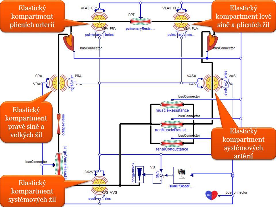 Elastický kompartment plicních arterií Elastický kompartment pravé síně a velkých žil Elastický kompartment systémových žil Elastický kompartment levé síně a plicních žil Elastický kompartment systémových artérií