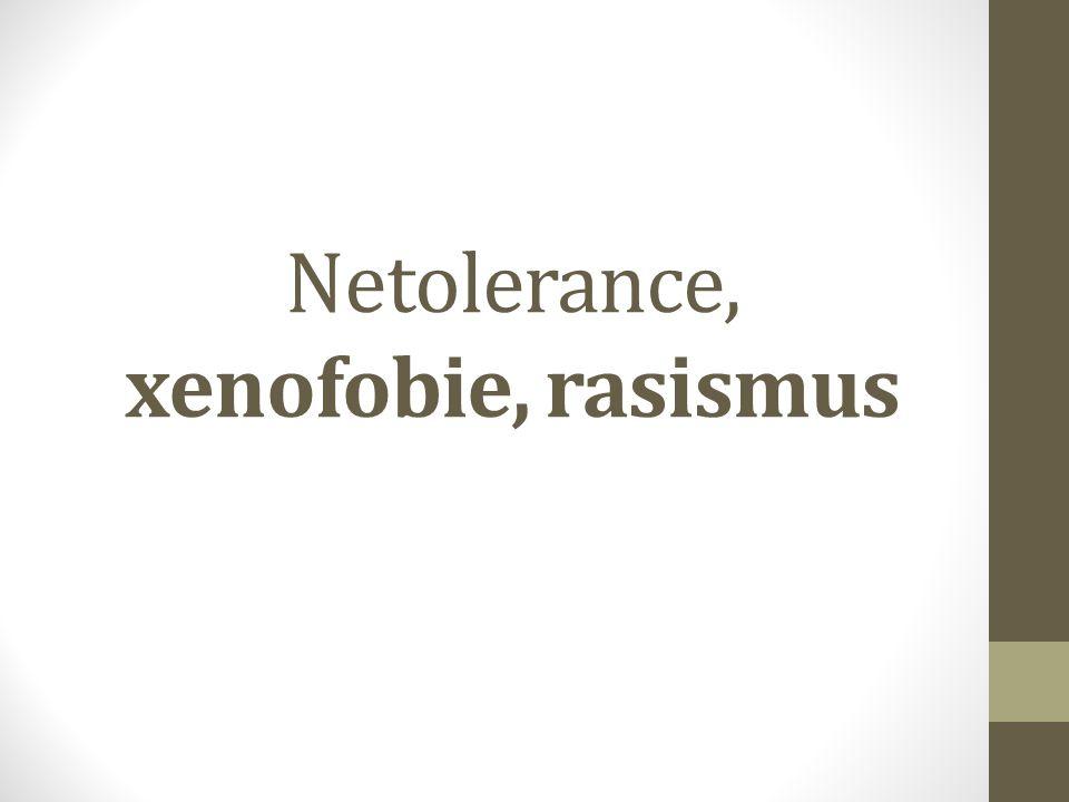 Netolerance, xenofobie, rasismus