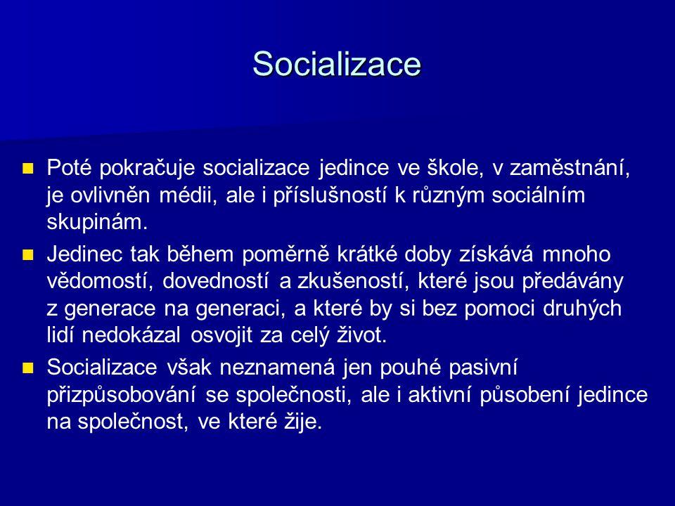 Socializace Poté pokračuje socializace jedince ve škole, v zaměstnání, je ovlivněn médii, ale i příslušností k různým sociálním skupinám. Jedinec tak