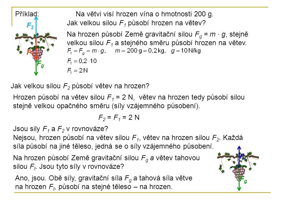 Příklad:Na větvi visí hrozen vína o hmotnosti 200 g. Jak velkou silou F 1 působí hrozen na větev? Na hrozen působí Země gravitační silou F g = m · g,
