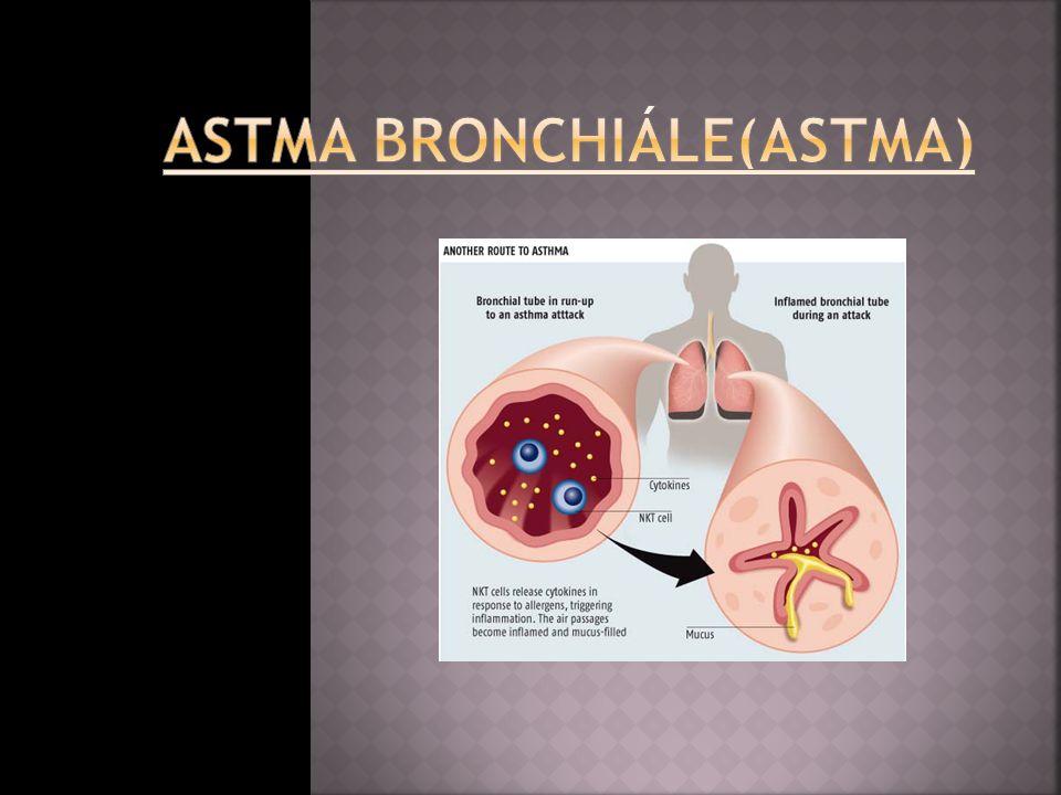  Průduškové astma - je onemocnění, které se vyznačuje záchvatovitou dušností a je provázeno na dálku slyšitelnými pískoty při výdechu.Typickým funkčním znakem je přechodné zvýšení dechového odporu.