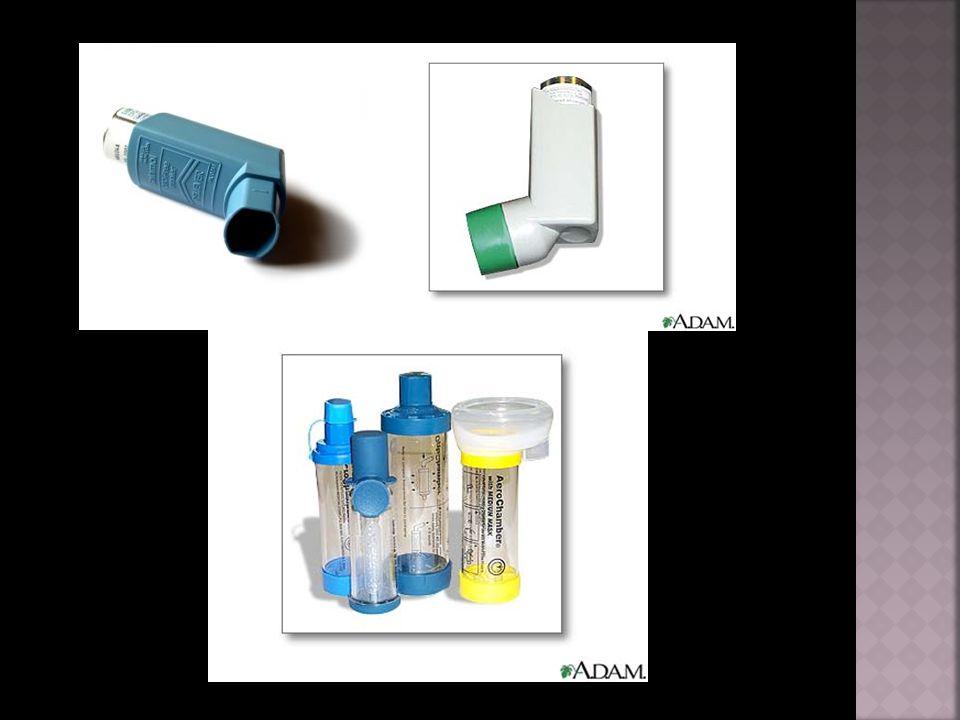  Propagační leták Klinika plicních nemocí a tuberkulózy  http://nemoci.abecedazdravi.cz/astma  http://astma.komplexne.cz/  http://lazne-bludov.cz/astma.htm