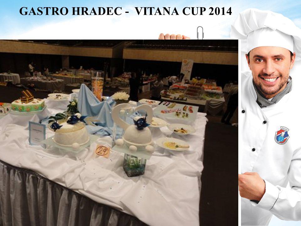 GASTRO HRADEC - VITANA CUP 2014