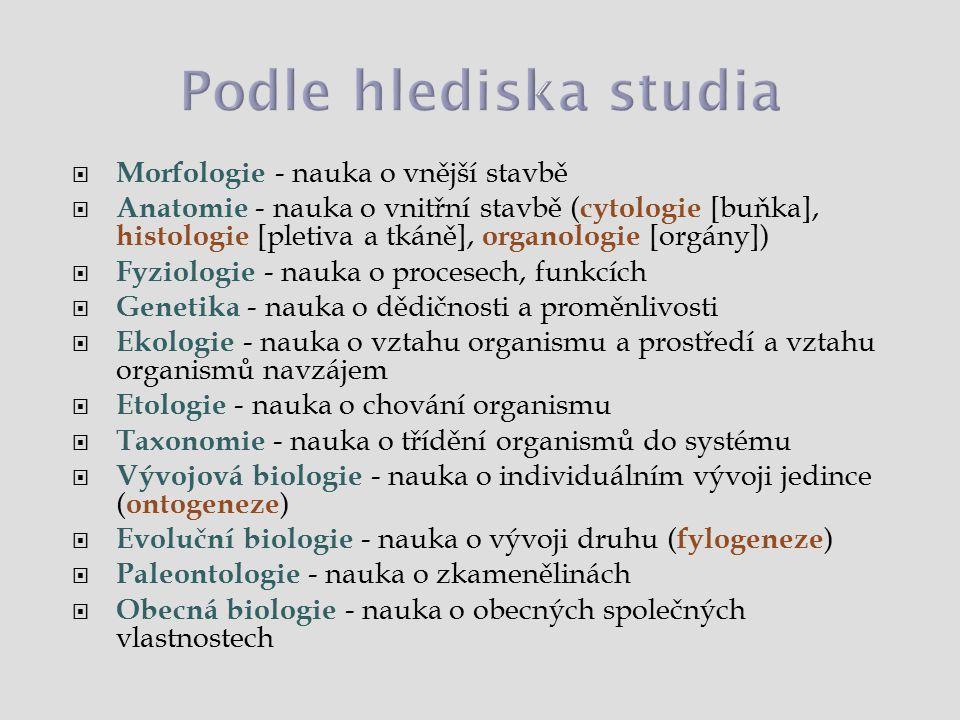  Morfologie - nauka o vnější stavbě  Anatomie - nauka o vnitřní stavbě ( cytologie [buňka], histologie [pletiva a tkáně], organologie [orgány])  Fy