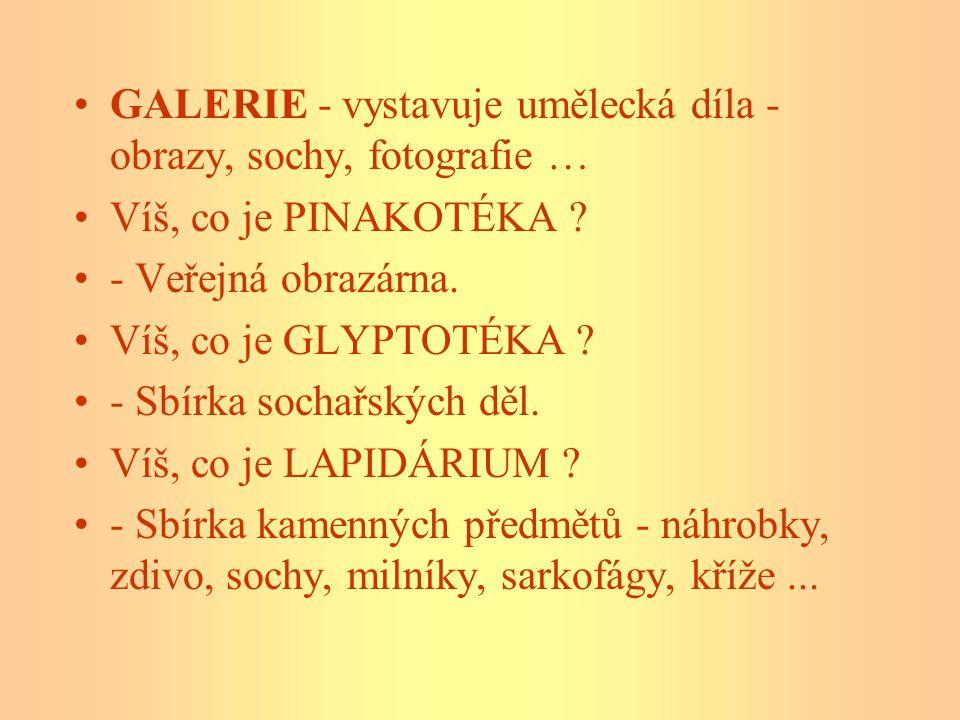 Jak se nazývá naše instituce, která uchovává největší sbírku umění v ČR .