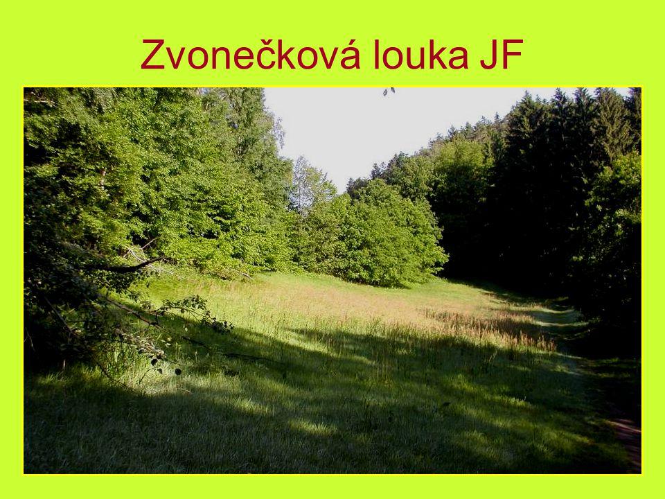 Čtyři zastávky na Stezce JF