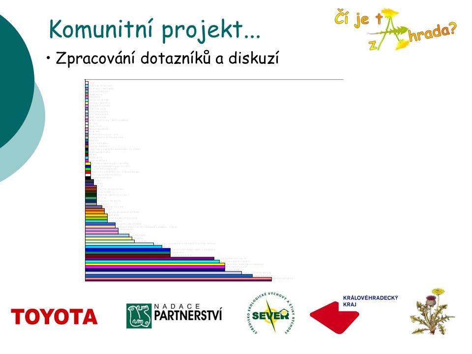 Komunitní projekt... Zpracování dotazníků a diskuzí