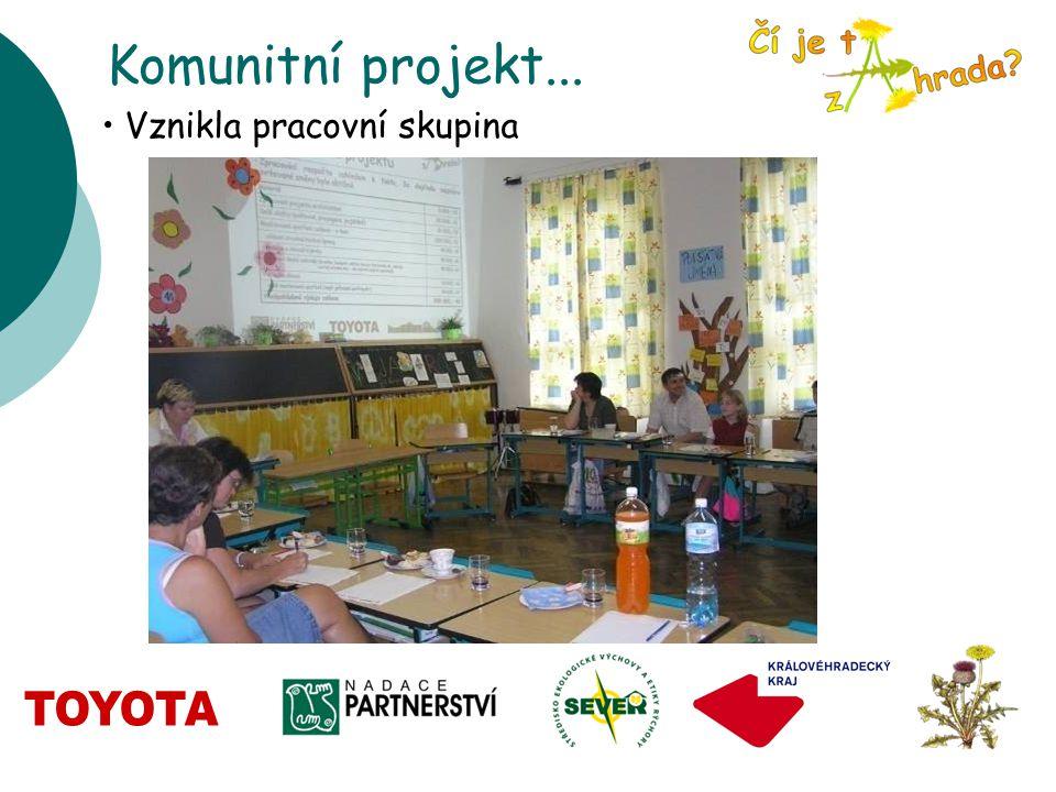 Komunitní projekt... Vznikla pracovní skupina