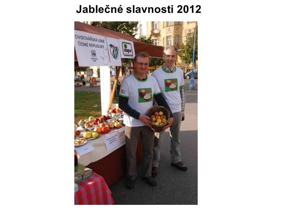 Jablečné slavnosti 2012