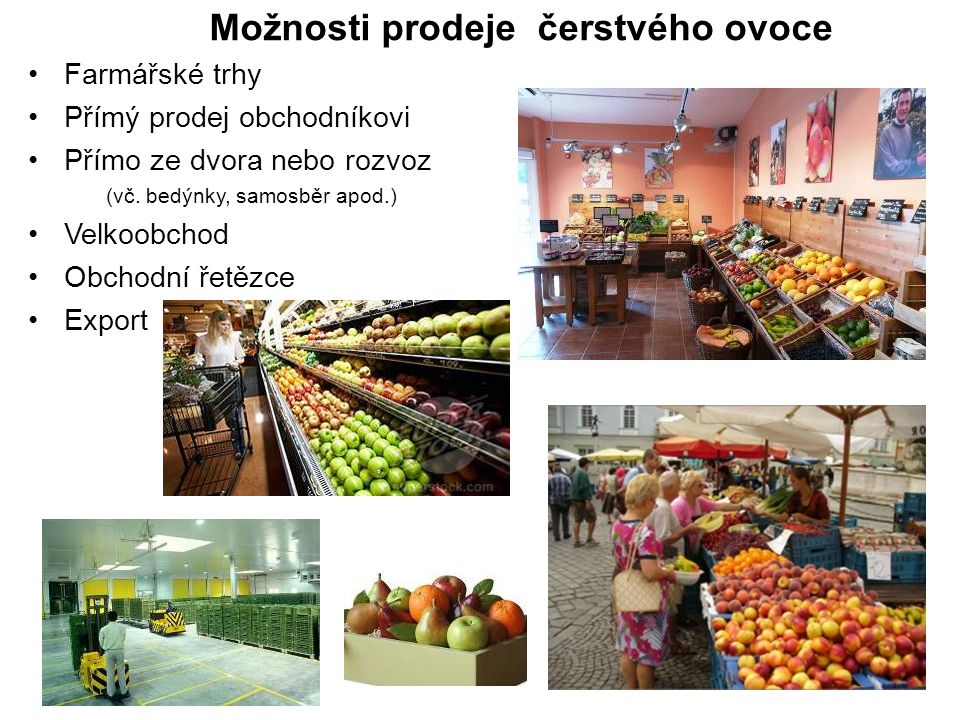 Možnosti prodeje čerstvého ovoce Farmářské trhy Přímý prodej obchodníkovi Přímo ze dvora nebo rozvoz (vč. bedýnky, samosběr apod.) Velkoobchod Obchodn