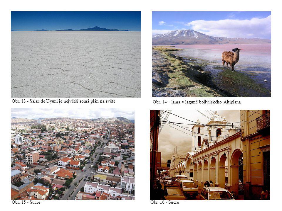 Obr. 13 - Salar de Uyuni je největší solná pláň na světě Obr. 14 – lama v laguně bolivijského Altiplana Obr. 15 - Sucre Obr. 16 - Sucre
