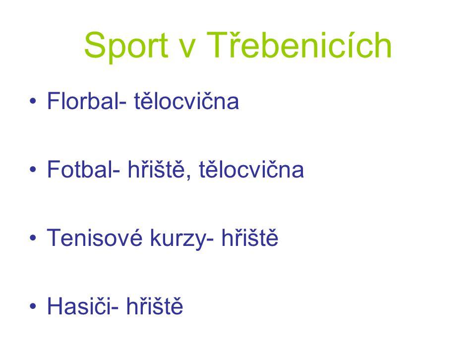 Sport v Třebenicích Florbal- tělocvična Fotbal- hřiště, tělocvična Tenisové kurzy- hřiště Hasiči- hřiště