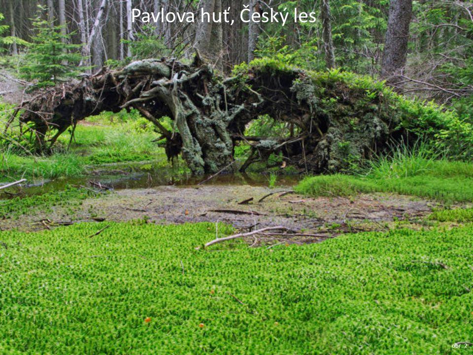 Přírodní turistické atraktivity část území odvodňuje Otava (zlatonosná řeka) na území kraje množství šumavských ledovcových jezer: – Černé – Čertovo – viz foto – Laka – Prášilské jezero obr.