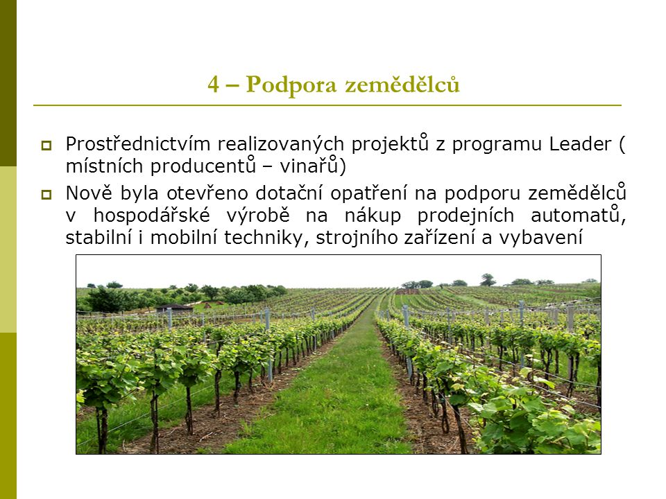 4 – Podpora zemědělců  Prostřednictvím realizovaných projektů z programu Leader ( místních producentů – vinařů)  Nově byla otevřeno dotační opatření