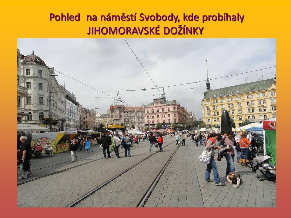 … V Brně se v tomto roce konaly současně dvě akce, nad kterými převzali záštitu hejtman Jihomoravského kraje Michal Hašek a primátor statutárního města Roman Onderka.