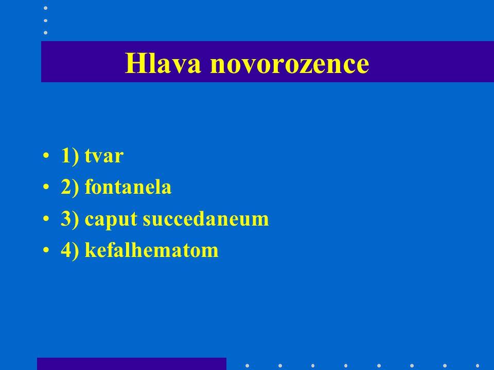 Hlava novorozence 1) tvar 2) fontanela 3) caput succedaneum 4) kefalhematom