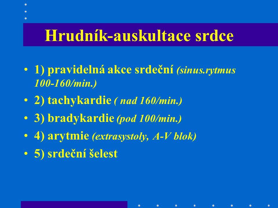 Hrudník-auskultace srdce 1) pravidelná akce srdeční (sinus.rytmus 100-160/min.) 2) tachykardie ( nad 160/min.) 3) bradykardie (pod 100/min.) 4) arytmi