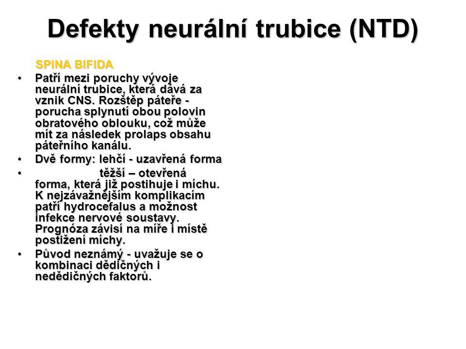 Defekty neurální trubice (NTD) SPINA BIFIDA SPINA BIFIDA Patří mezi poruchy vývoje neurální trubice, která dává za vznik CNS. Rozštěp páteře - porucha