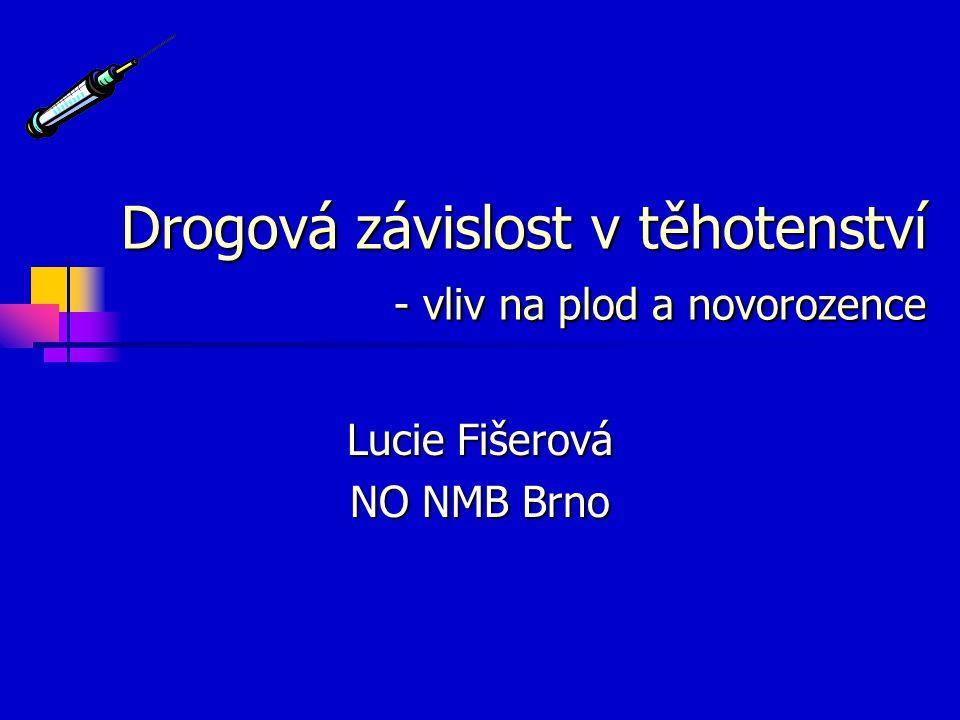 Drogová závislost v těhotenství - vliv na plod a novorozence Lucie Fišerová NO NMB Brno