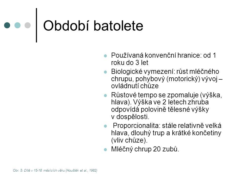 Období batolete Používaná konvenční hranice: od 1 roku do 3 let Biologické vymezení: růst mléčného chrupu, pohybový (motorický) vývoj – ovládnutí chůz