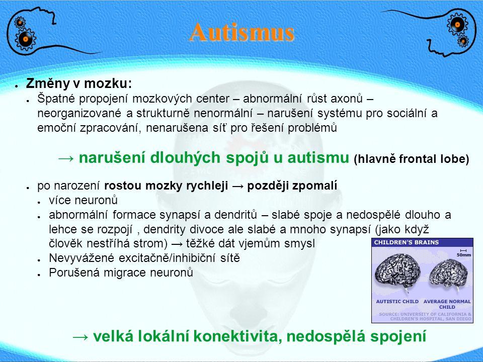 Autismus ● Změny v mozku: ● Špatné propojení mozkových center – abnormální růst axonů – neorganizované a strukturně nenormální – narušení systému pro