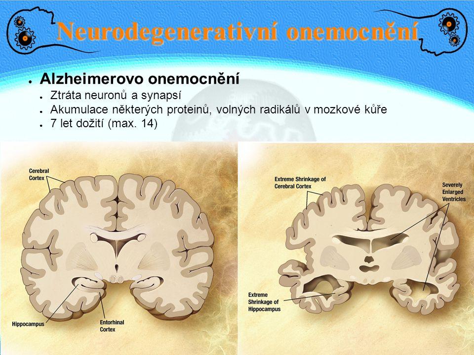 Neurodegenerativní onemocnění ● Alzheimerovo onemocnění ● Ztráta neuronů a synapsí ● Akumulace některých proteinů, volných radikálů v mozkové kůře ● 7