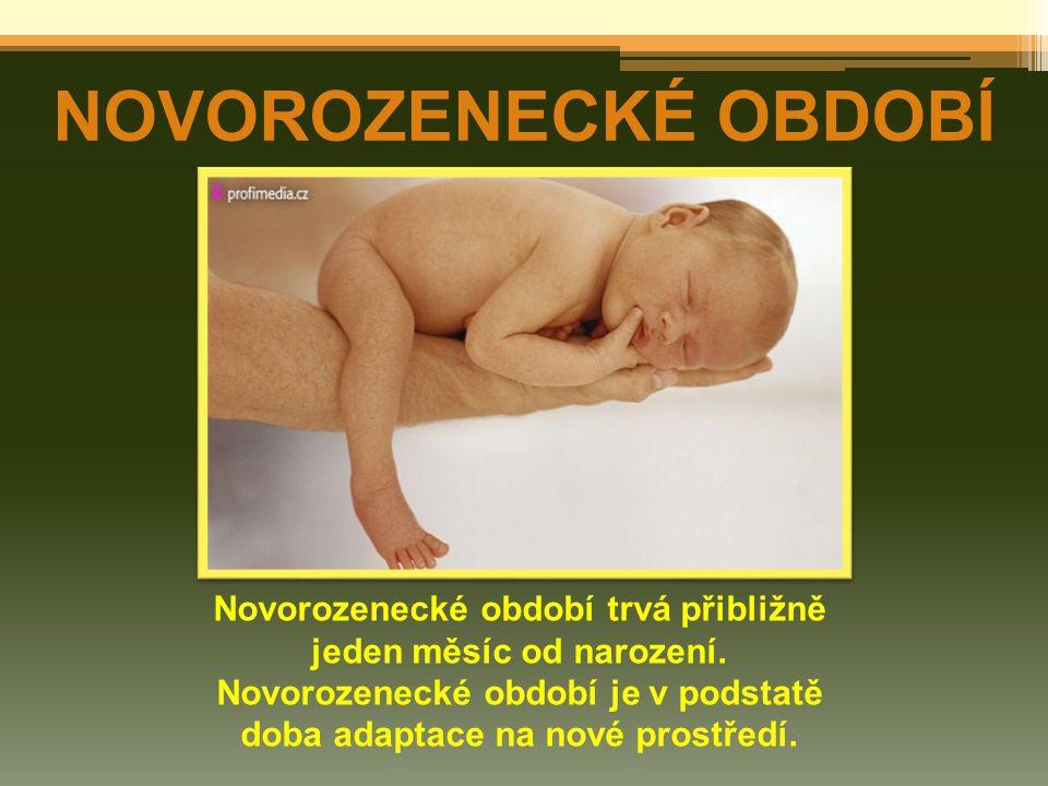 NOVOROZENECKÉ OBDOBÍ Novorozenecké období trvá přibližně jeden měsíc od narození.