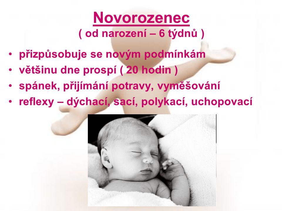 Novorozenec ( od narození – 6 týdnů ) přizpůsobuje se novým podmínkám většinu dne prospí ( 20 hodin ) spánek, přijímání potravy, vyměšování reflexy –