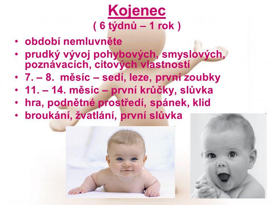 Kojenec ( 6 týdnů – 1 rok ) období nemluvněte prudký vývoj pohybových, smyslových, poznávacích, citových vlastností 7. – 8. měsíc – sedí, leze, první